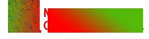 manassas Logo